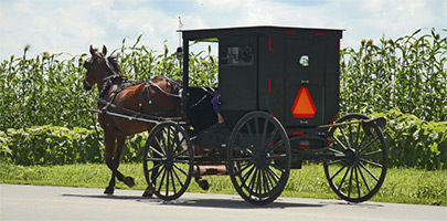 Amish Country of Central Illinois Convention and Visitors Bureau